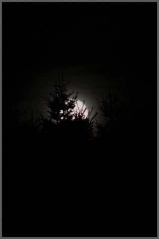 moon-blur